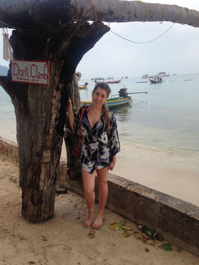 thailand beach tree