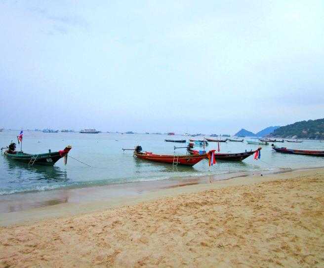 Koh Tao Boats